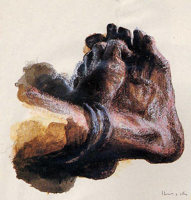 foot-camarena